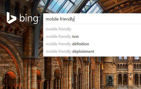Bing - Mobile-Friendly